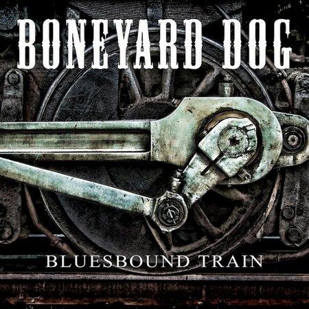 boneyard_dog_folder